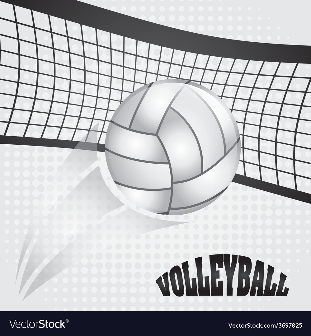 Volleyball ball vector | Price: 1 Credit (USD $1)