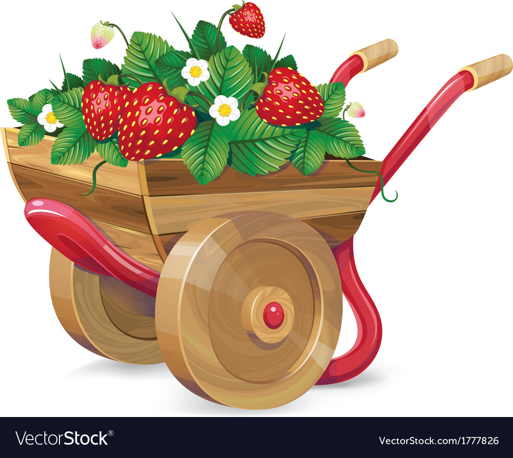 Strawberry barrow vector | Price: 3 Credit (USD $3)