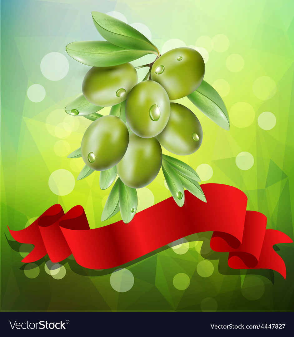 Olive branch with red ribbon on a green background vector | Price: 1 Credit (USD $1)