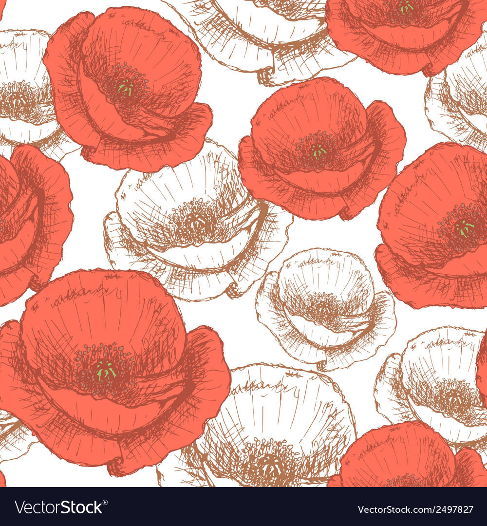 Poppy vector | Price: 1 Credit (USD $1)