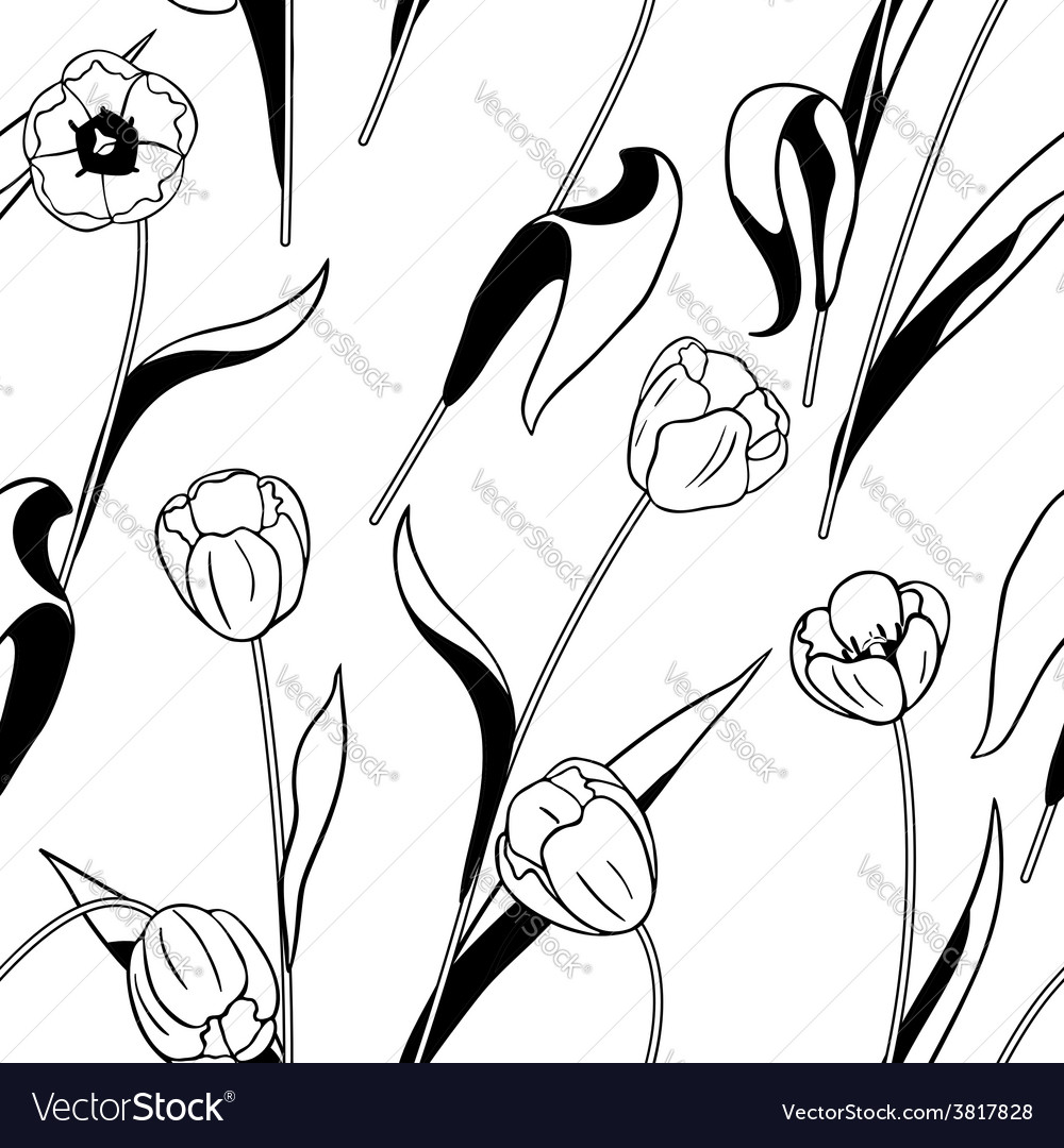 Tulip black white vector | Price: 1 Credit (USD $1)