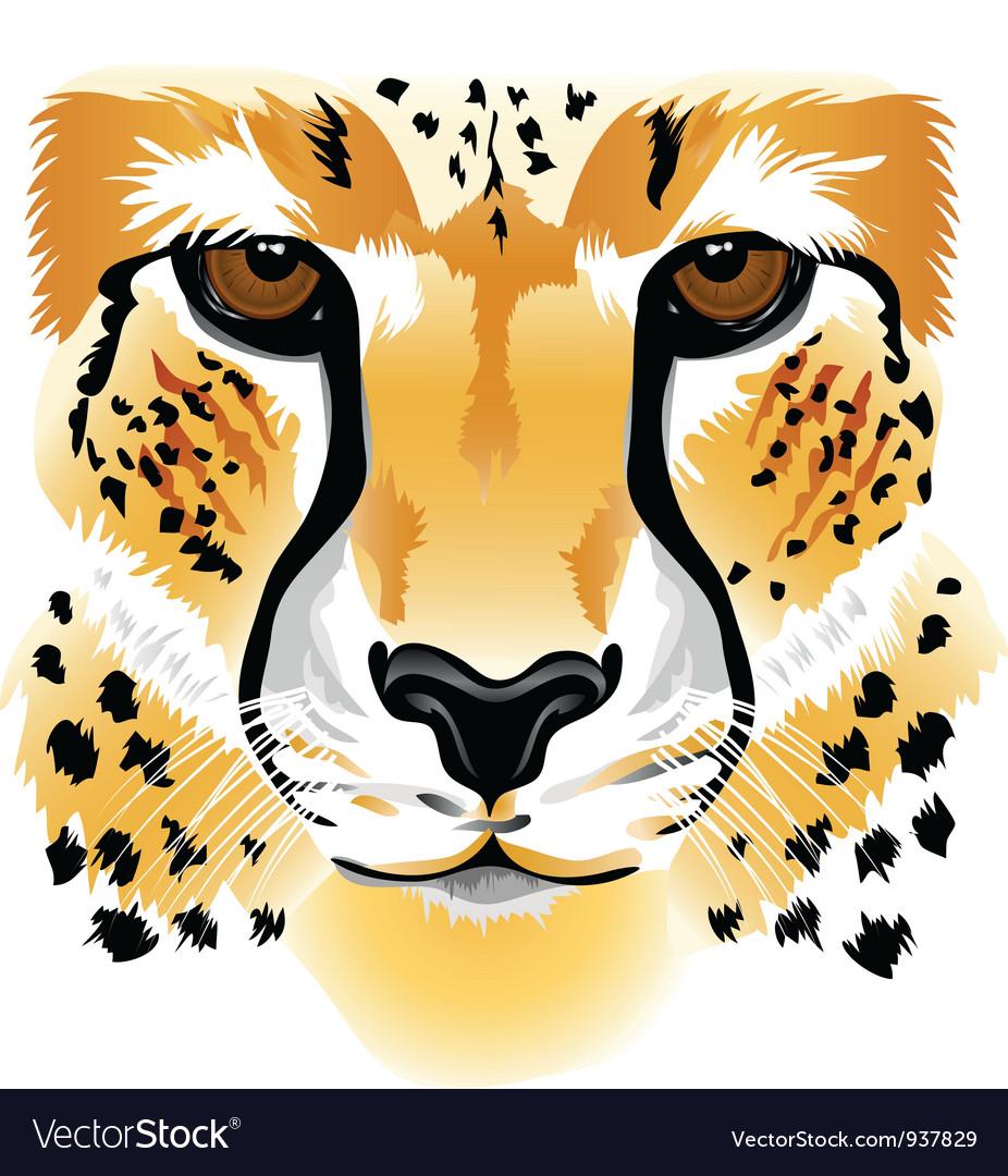 Cheetah face vector | Price: 1 Credit (USD $1)