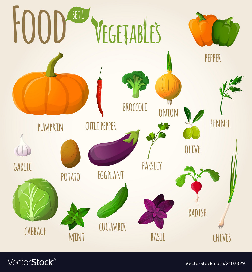 Food vegetables set vector | Price: 1 Credit (USD $1)