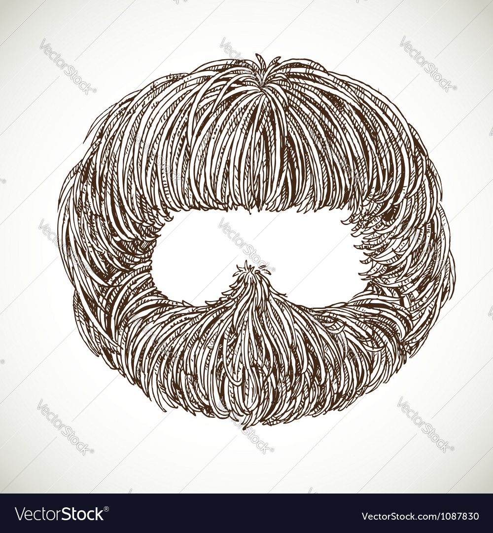 Neat beard vector | Price: 1 Credit (USD $1)