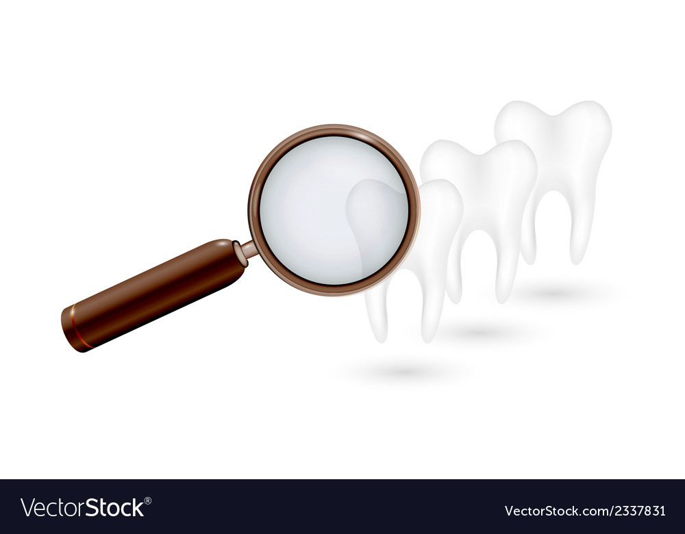 Magnifying glass and white teeth vector | Price: 1 Credit (USD $1)