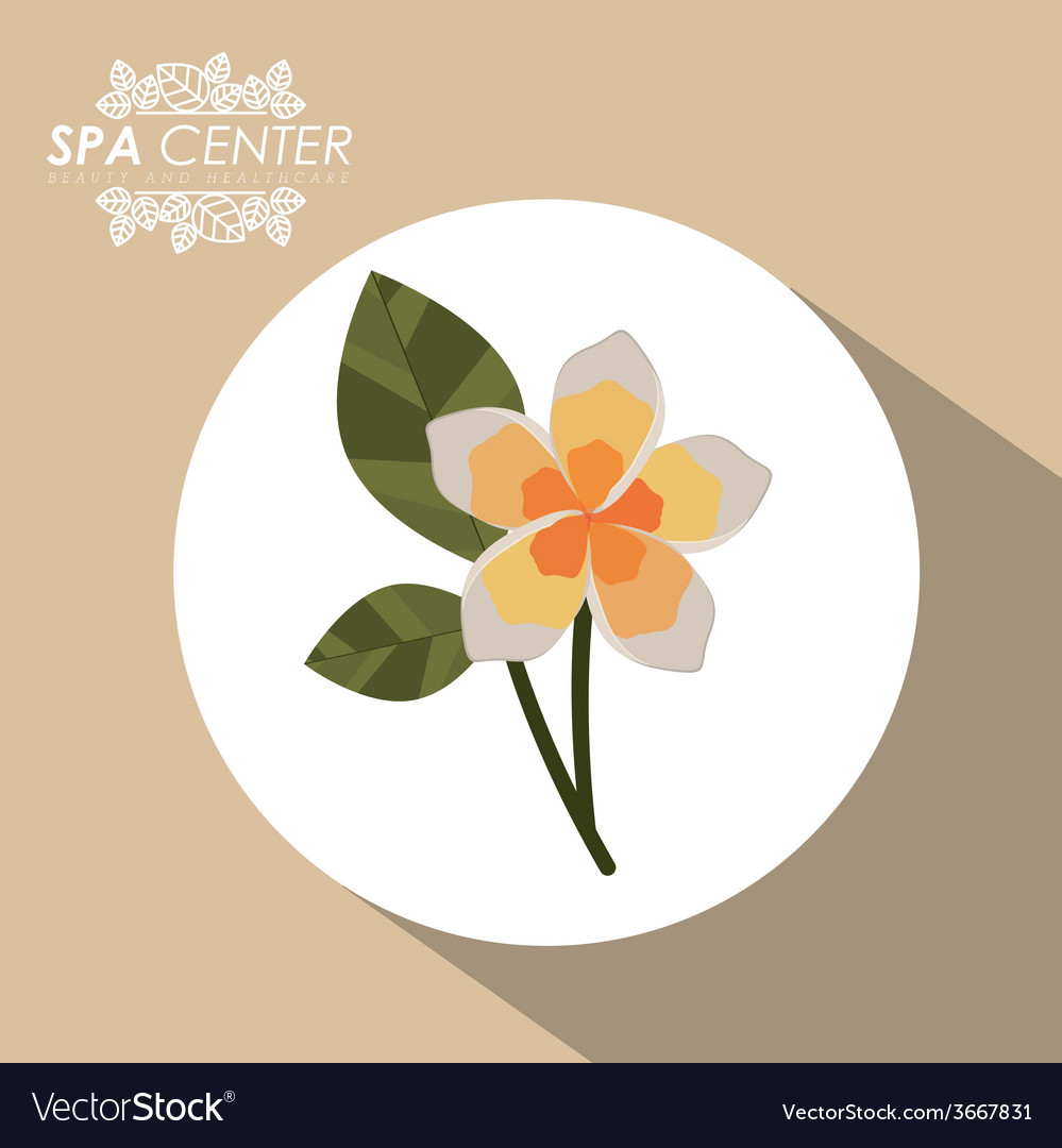 Spa design vector   Price: 1 Credit (USD $1)