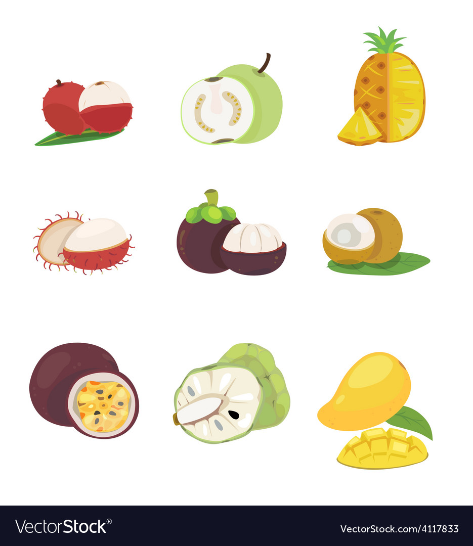 Tropical fruit vector | Price: 1 Credit (USD $1)