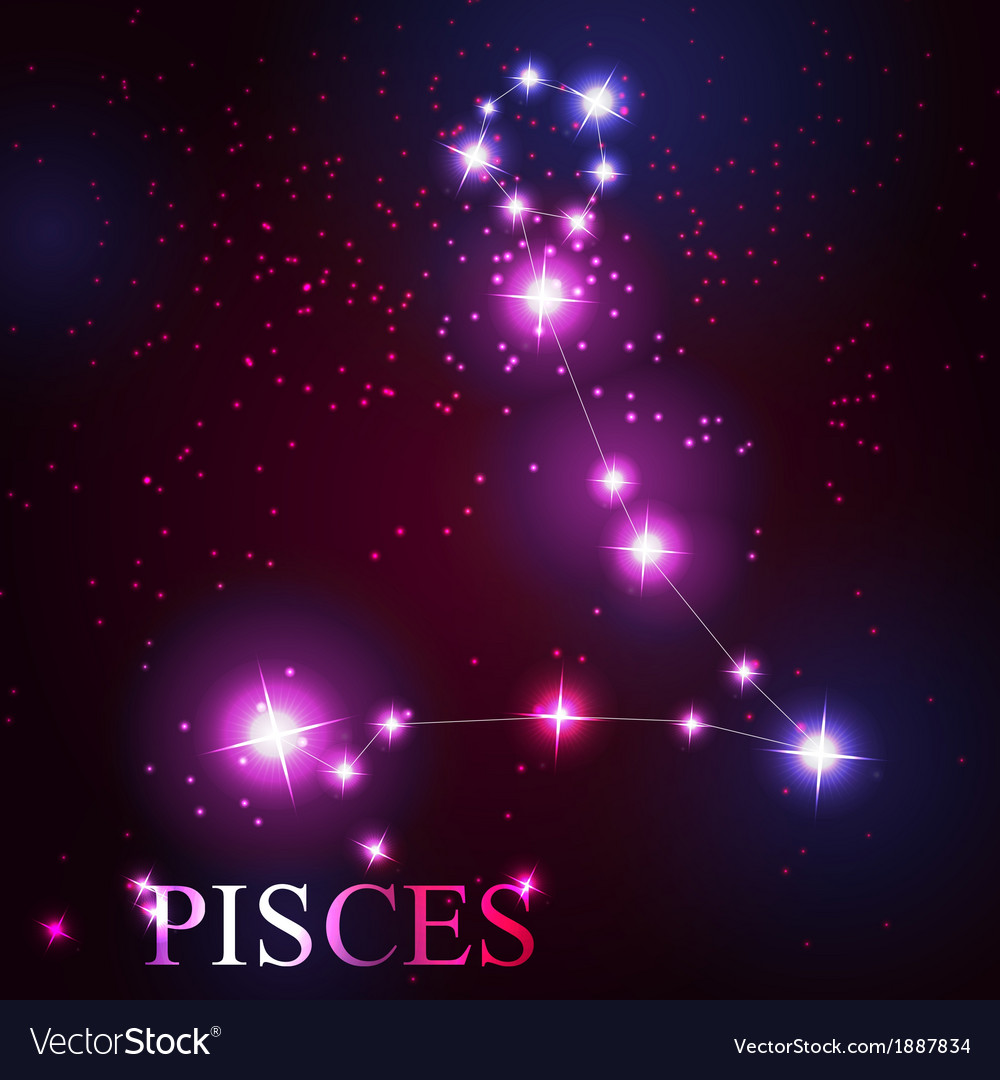 Pisces zodiac sign of the beautiful bright stars vector | Price: 1 Credit (USD $1)
