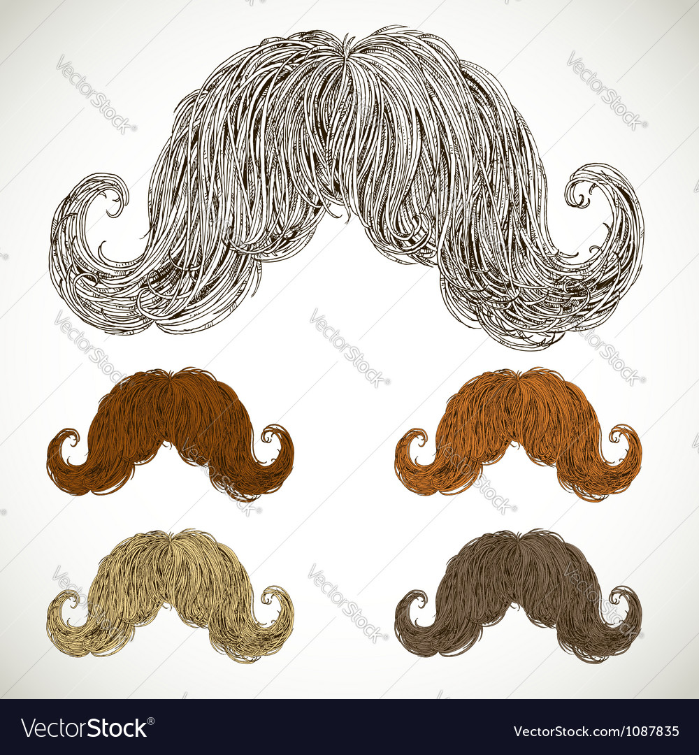 Lush mustache groomed in several colors vector | Price: 1 Credit (USD $1)