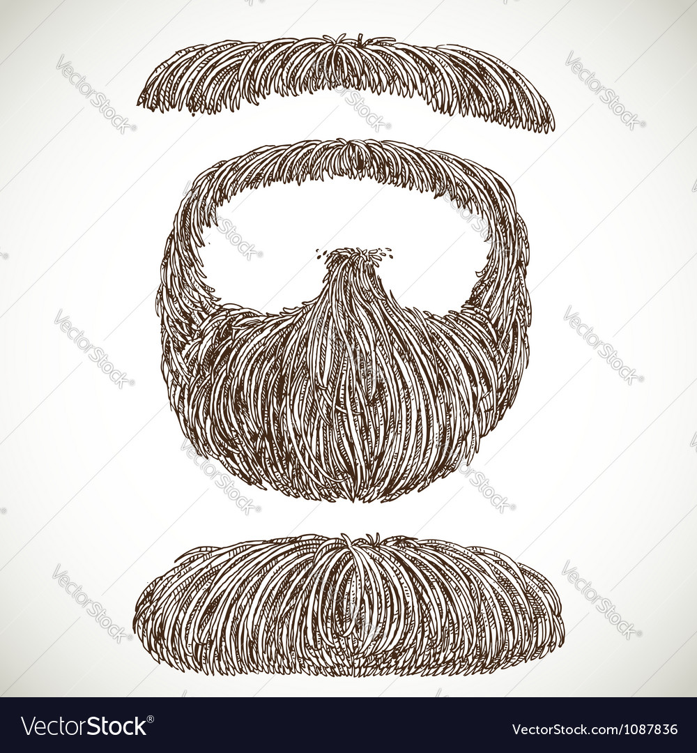 Lush retro mustache and beard vector | Price: 1 Credit (USD $1)