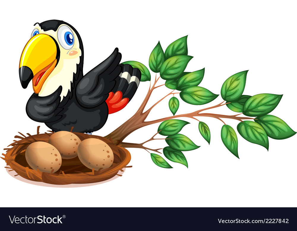 A nest at the branch of a tree with a bird vector | Price: 1 Credit (USD $1)
