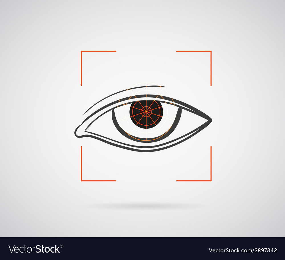 Eye identification vector | Price: 1 Credit (USD $1)