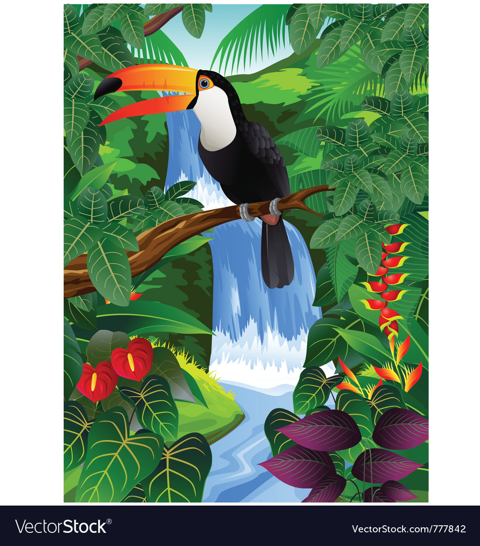 Toucan bird in the jungle vector | Price: 3 Credit (USD $3)
