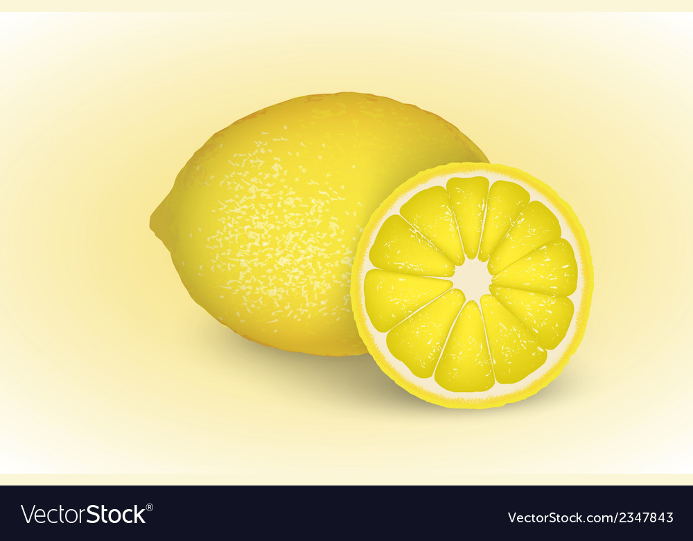 Fresh lemon and lemon slice vector | Price: 1 Credit (USD $1)