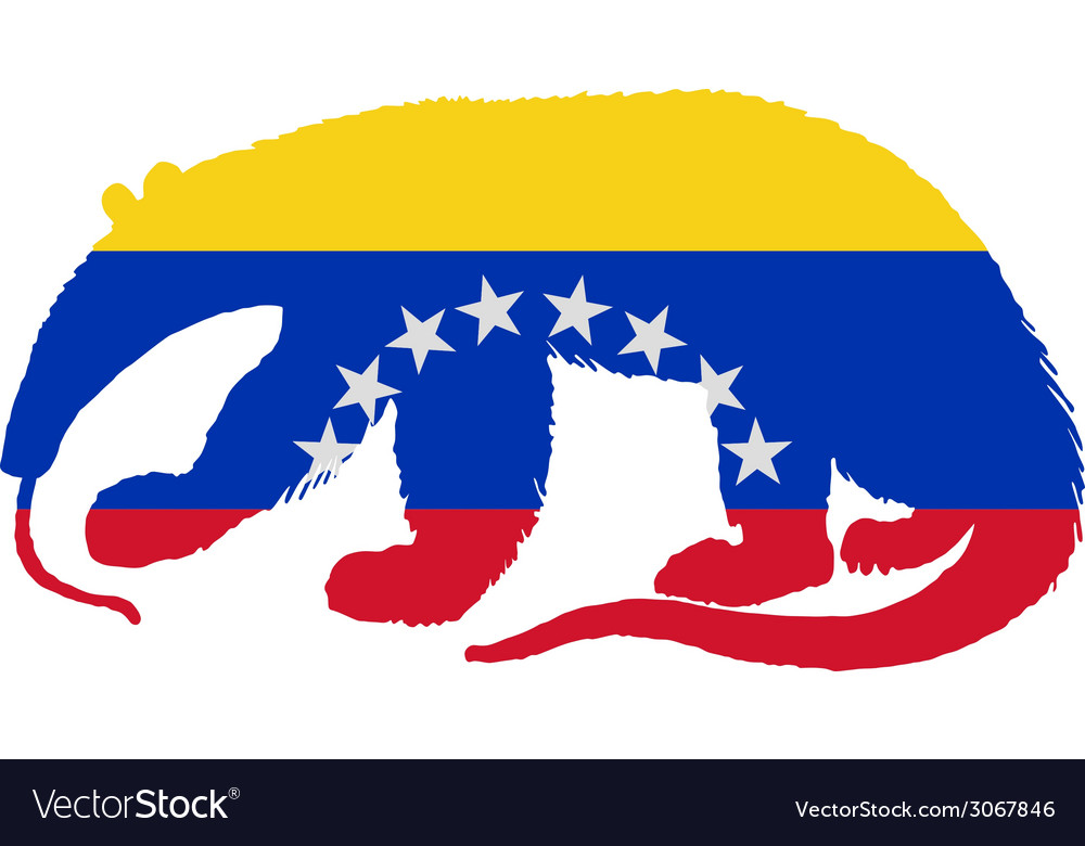 Anteater venezuela vector | Price: 1 Credit (USD $1)