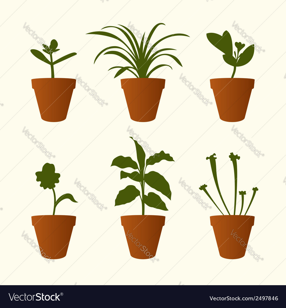 Plants in flowerpots vector | Price: 1 Credit (USD $1)