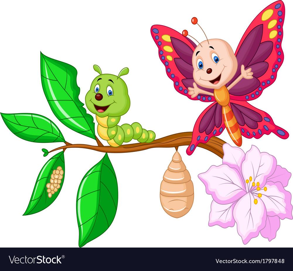 Butterfly metamorphosis cartoon vector | Price: 1 Credit (USD $1)