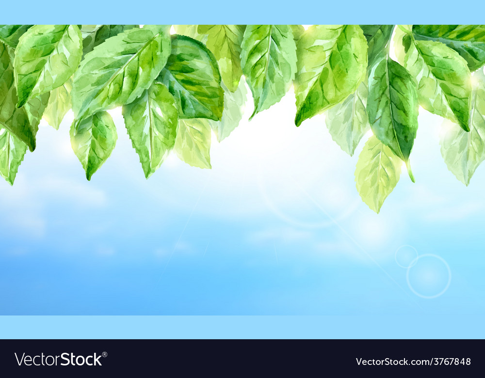 Horizontal watercolor background of spring leaves vector | Price: 1 Credit (USD $1)
