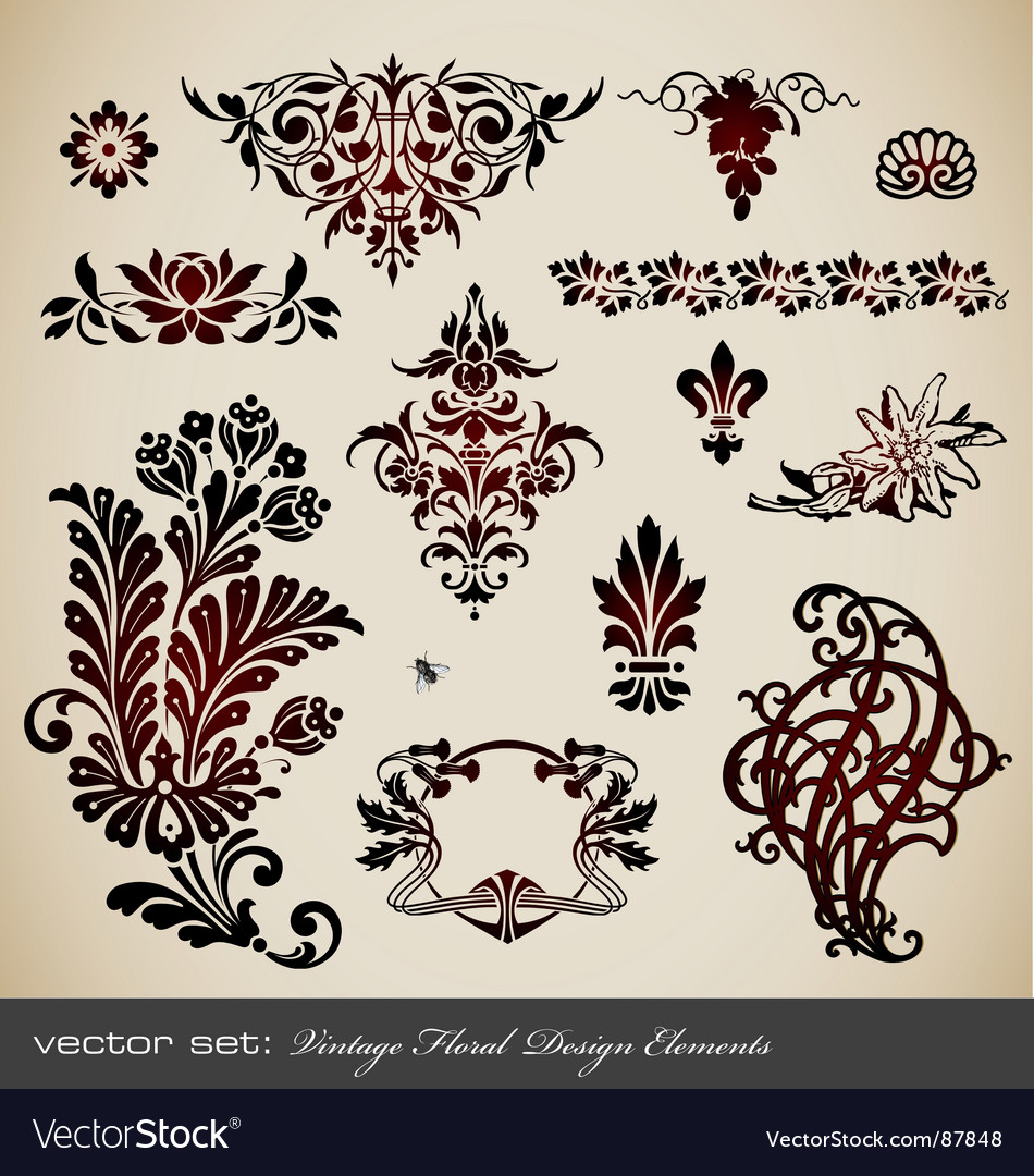 Set vintage floral elements vector | Price: 1 Credit (USD $1)
