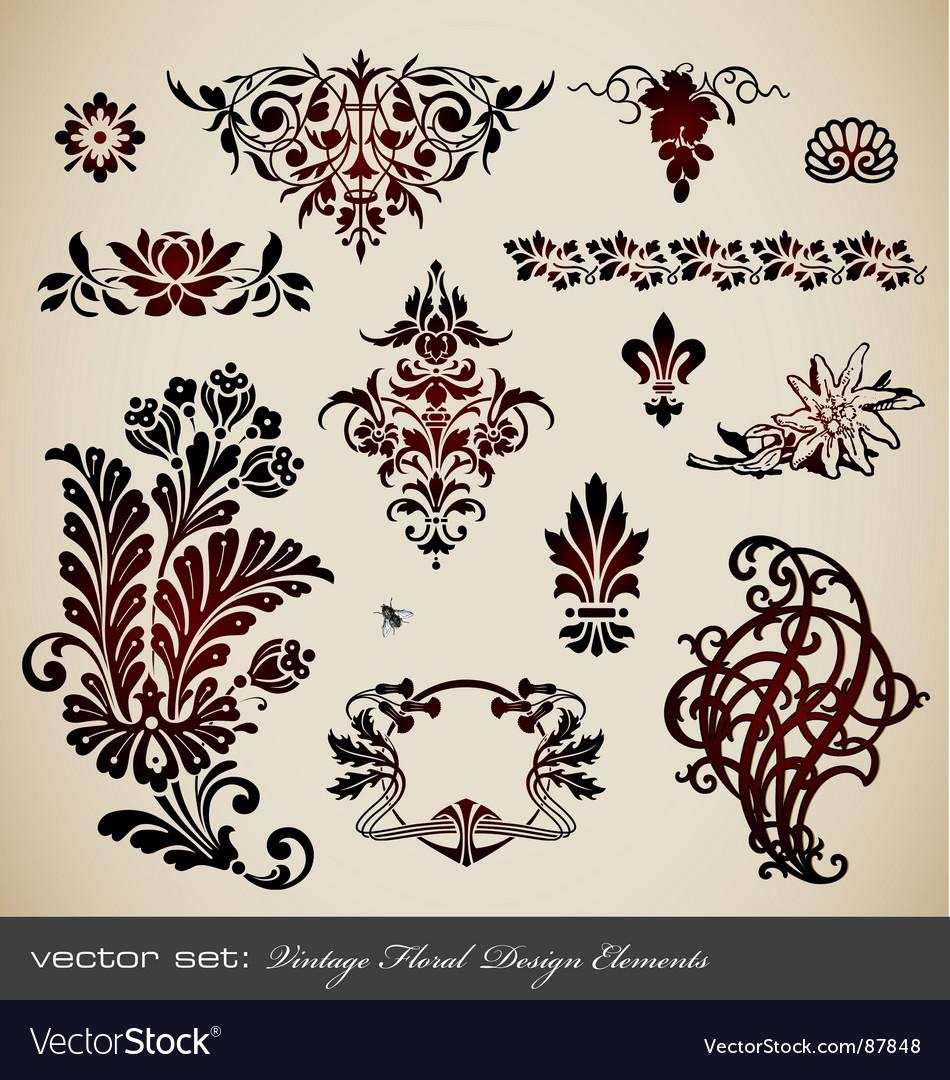 Set vintage floral elements vector | Price: 1 Credit (USD $1)