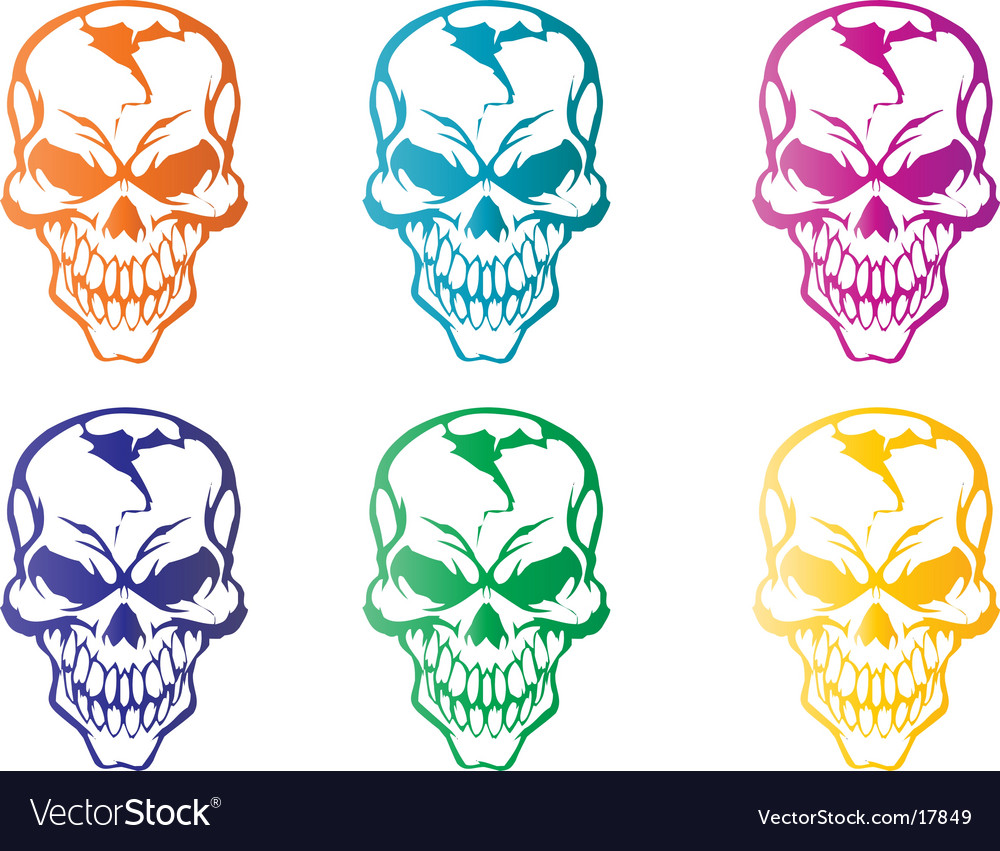 Colorful skulls vector | Price: 1 Credit (USD $1)