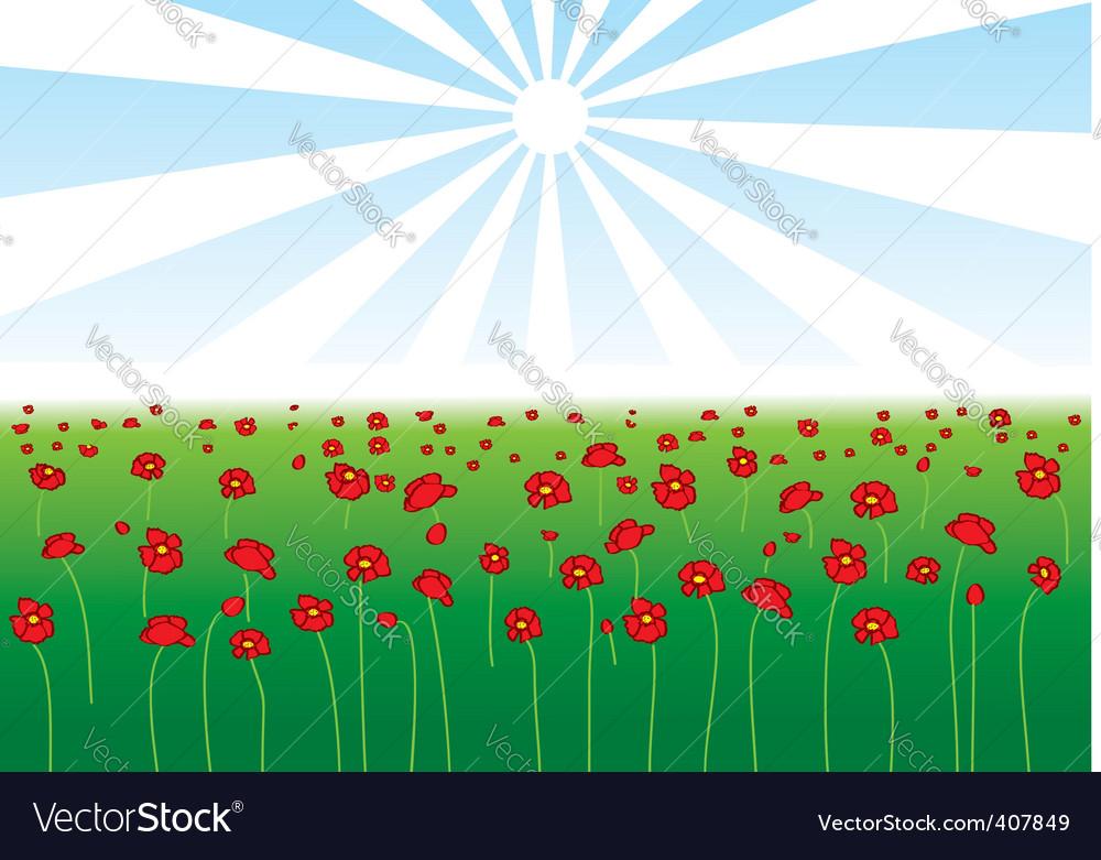 Field poppy vector | Price: 1 Credit (USD $1)