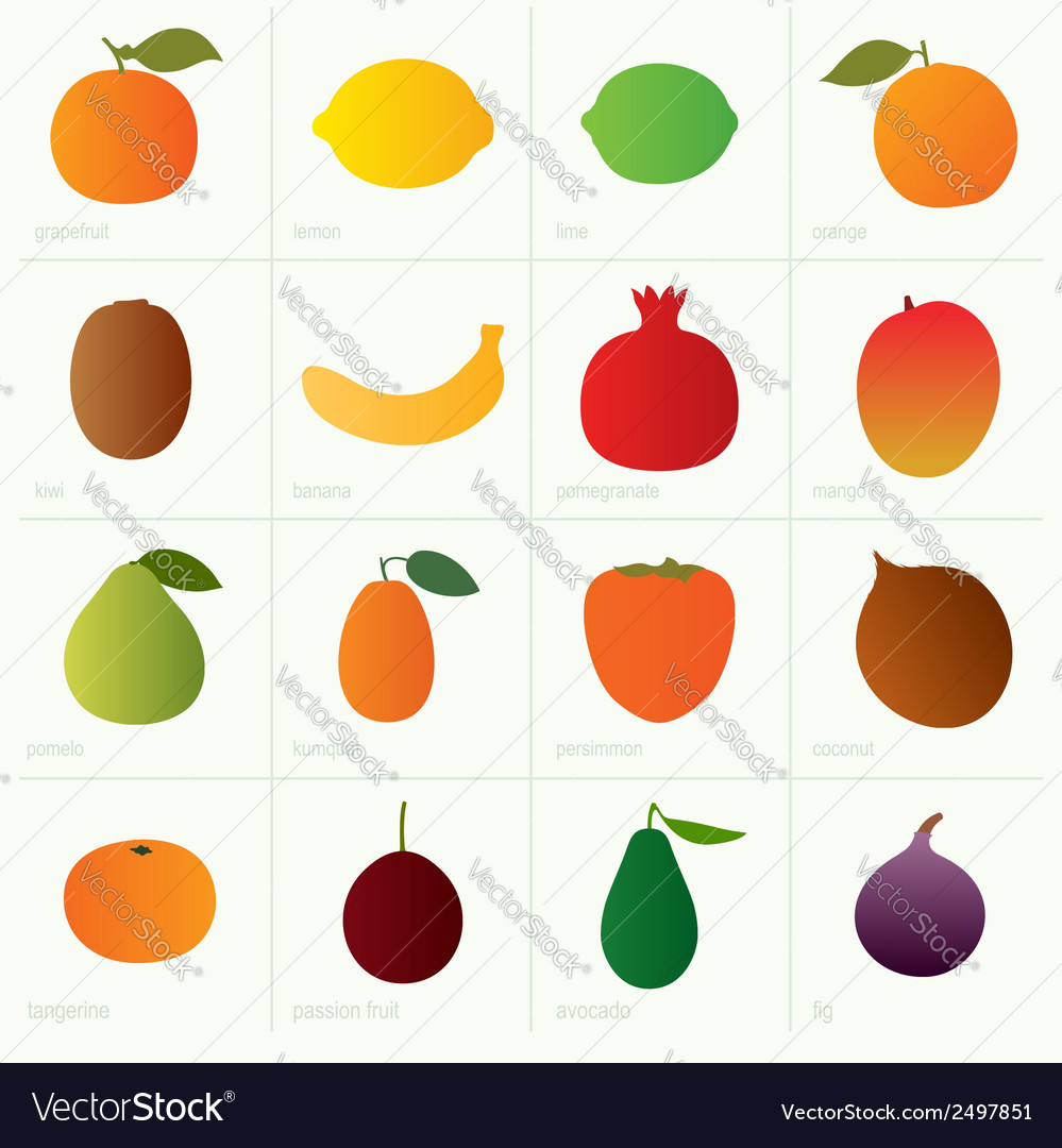 Color fruits vector | Price: 1 Credit (USD $1)