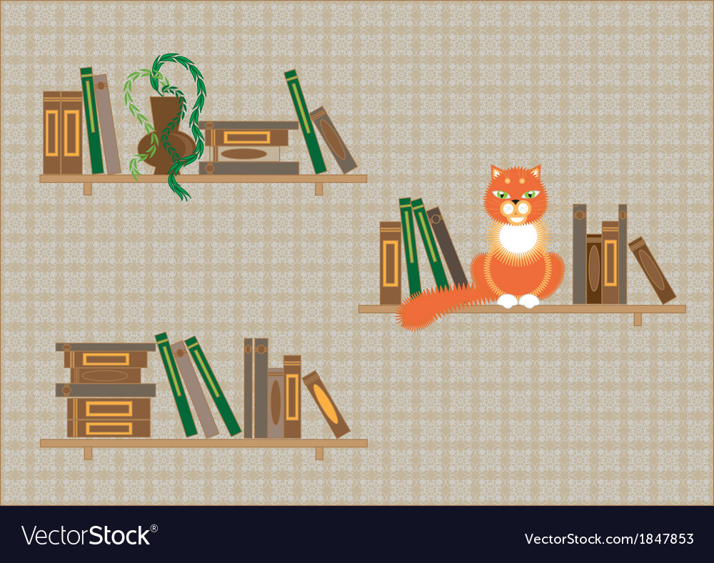 Bookshelves and a cat vector | Price: 1 Credit (USD $1)