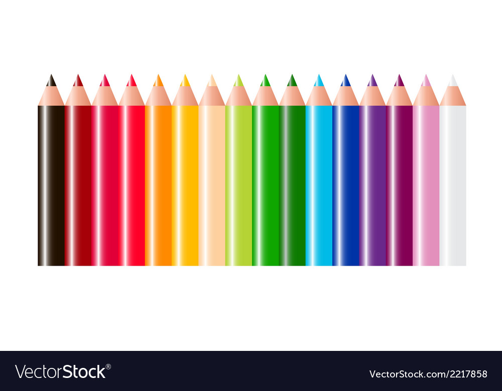 Pencils isolated on white background vector | Price: 1 Credit (USD $1)