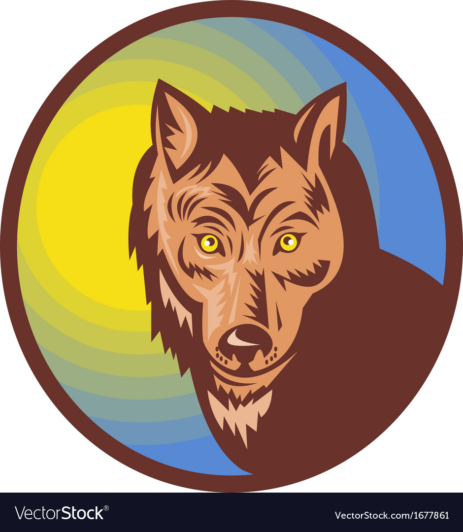Wolf looking at the viewer vector   Price: 1 Credit (USD $1)