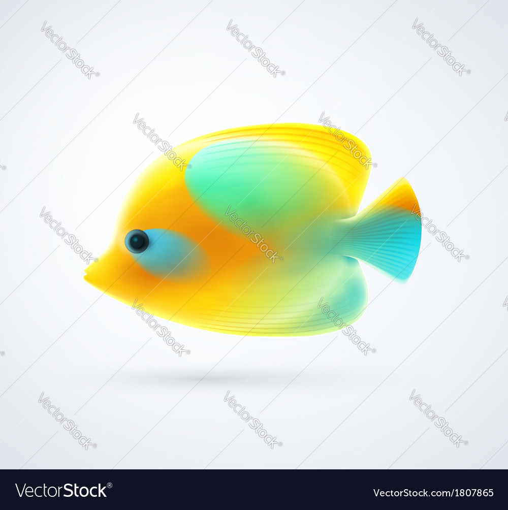 Tropical fish vector | Price: 1 Credit (USD $1)