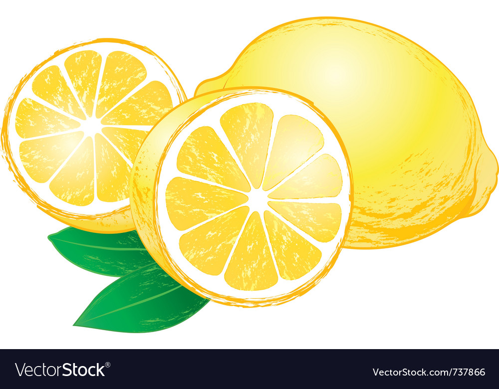 Lemons with leaves vector | Price: 3 Credit (USD $3)