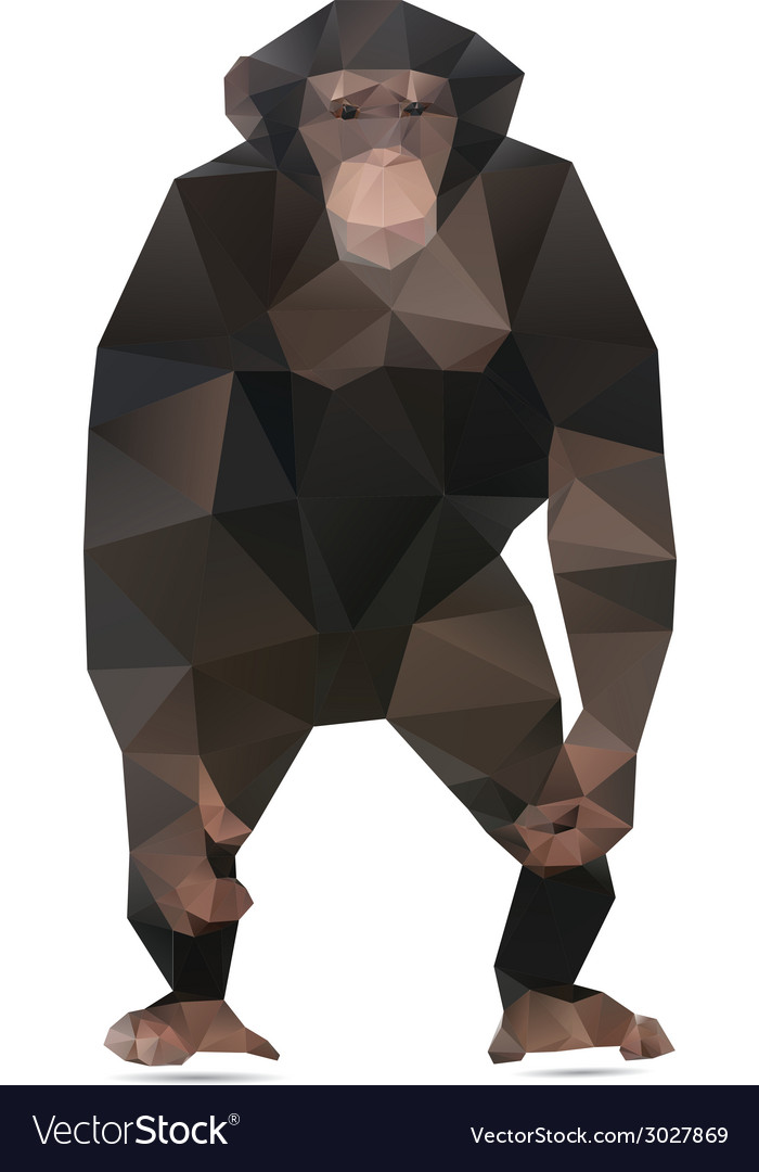 Abstract monkey vector | Price: 1 Credit (USD $1)
