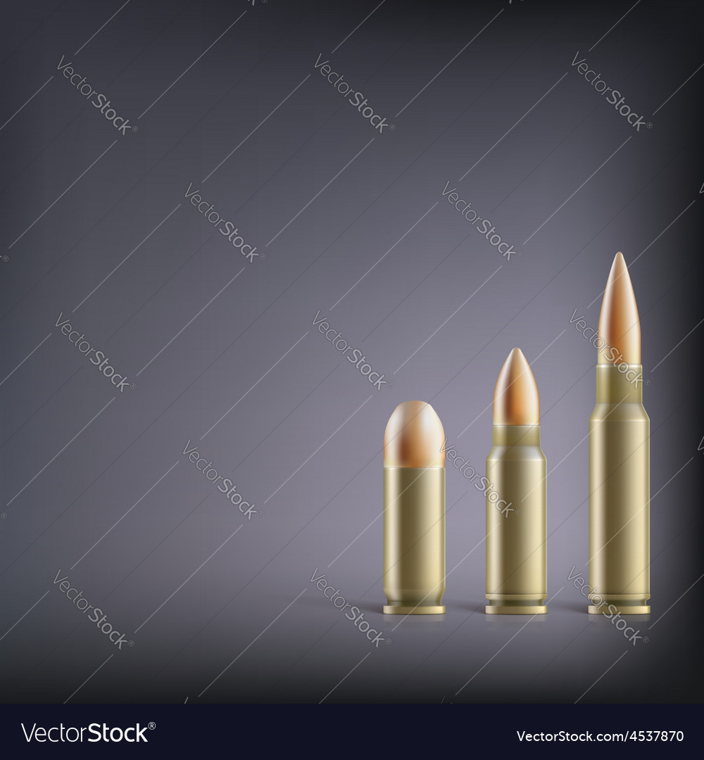 Rifle bullets vector   Price: 1 Credit (USD $1)