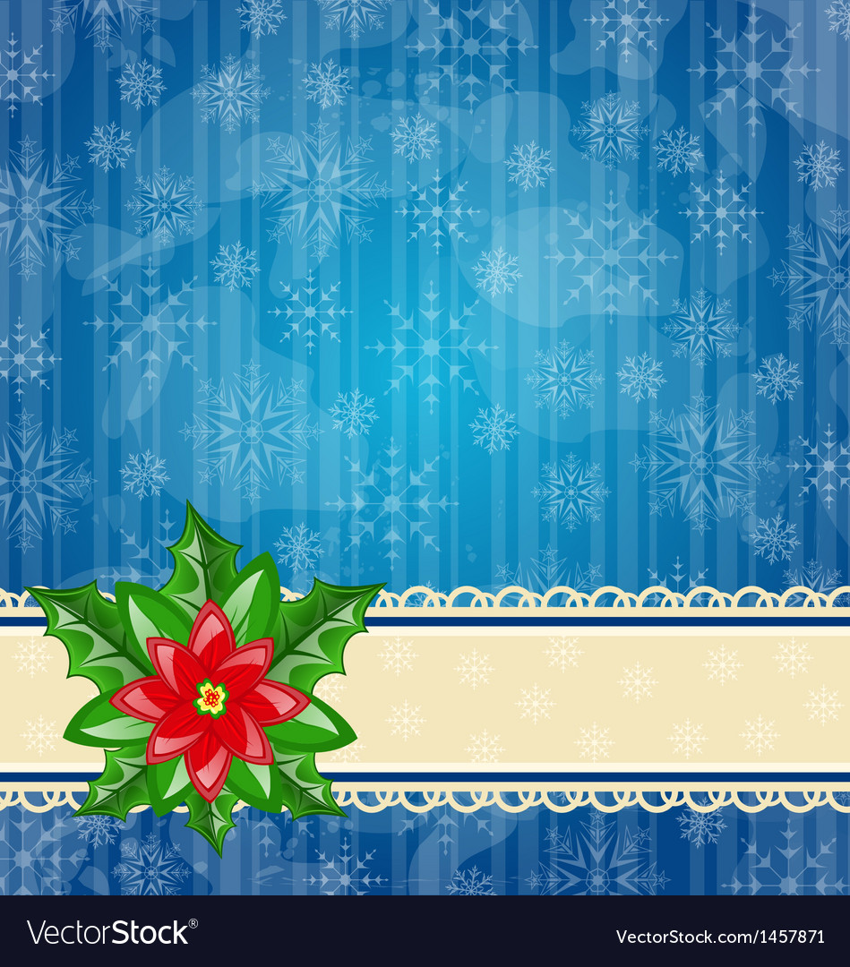 Christmas wallpaper with flower poinsettia vector | Price: 1 Credit (USD $1)