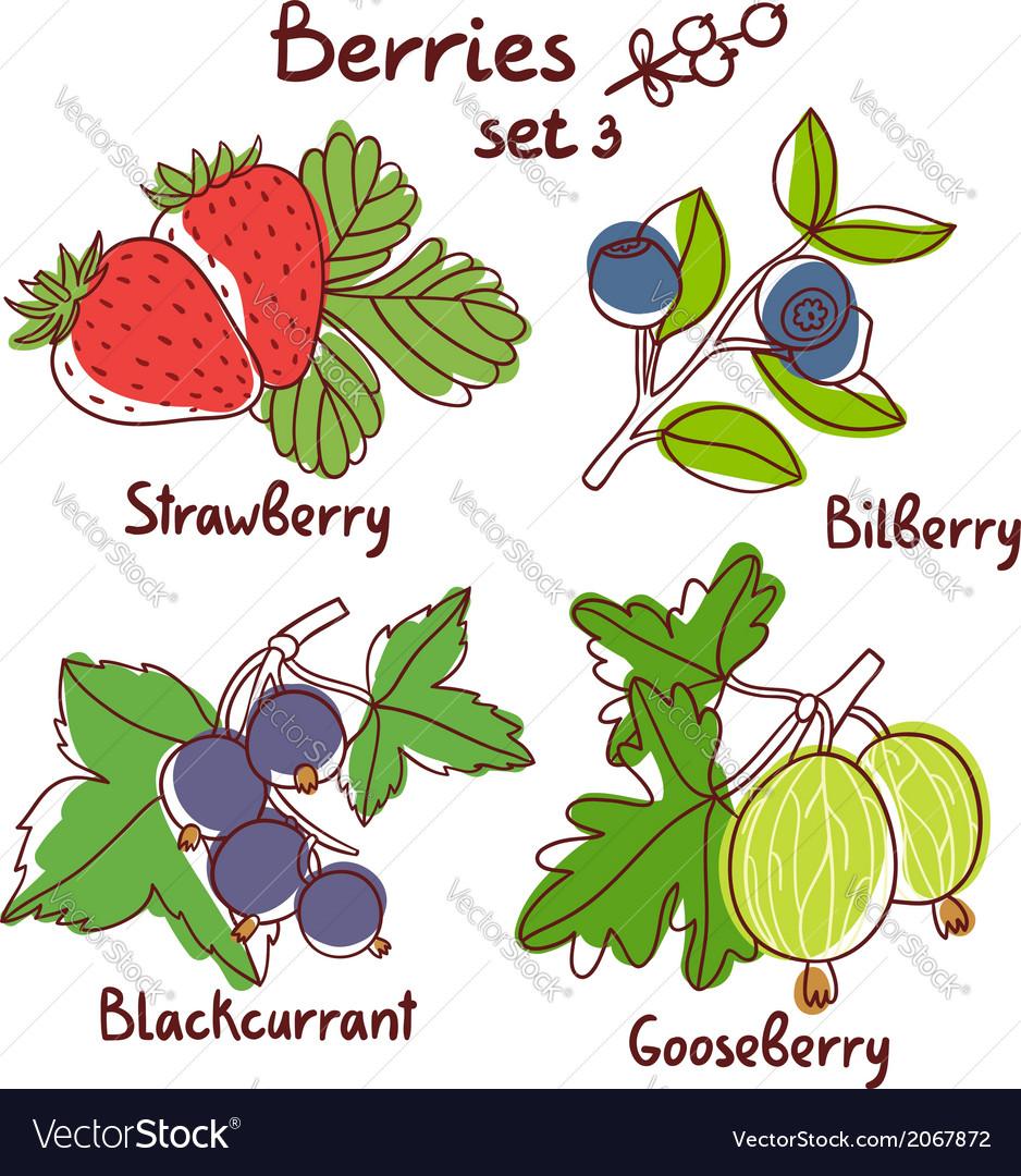 Berries set 3 vector | Price: 1 Credit (USD $1)