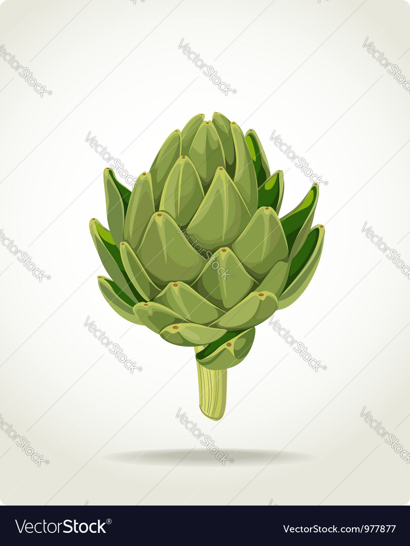 Green fresh useful eco friendly artichoke vector | Price: 3 Credit (USD $3)