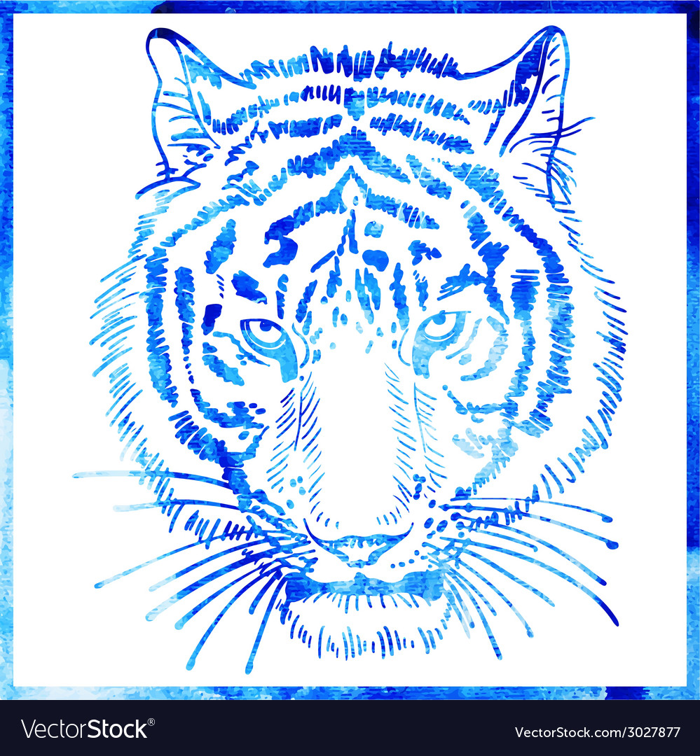 Head of tiger is in a watercolor artwork in a blue vector | Price: 1 Credit (USD $1)