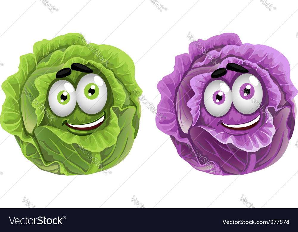 Head of fun purple and green cabbage vector | Price: 3 Credit (USD $3)
