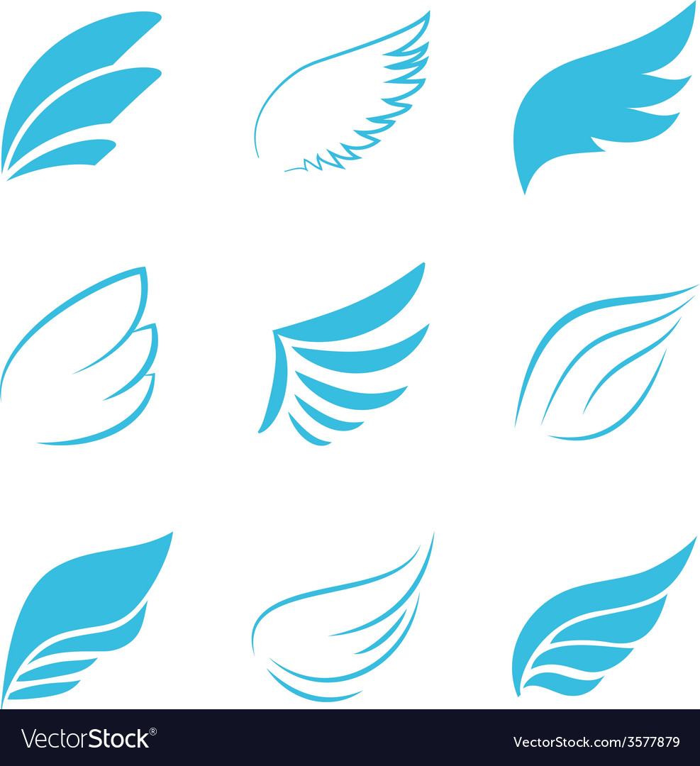 Variety blue wings on white background vector | Price: 1 Credit (USD $1)