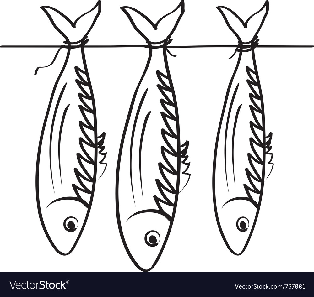 Sea roach stockfish vector | Price: 1 Credit (USD $1)