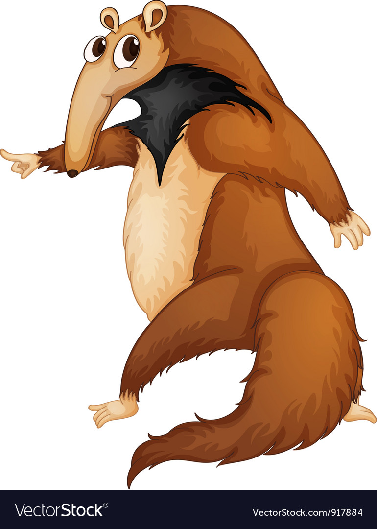 Anteater vector | Price: 3 Credit (USD $3)