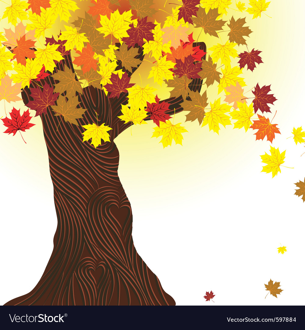 Autumn tree vector | Price: 3 Credit (USD $3)
