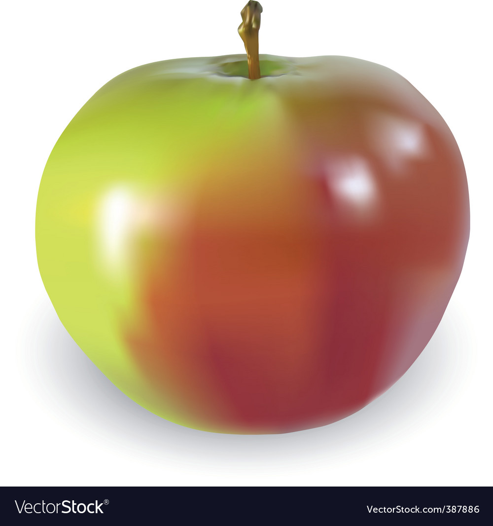 Big apple vector | Price: 1 Credit (USD $1)