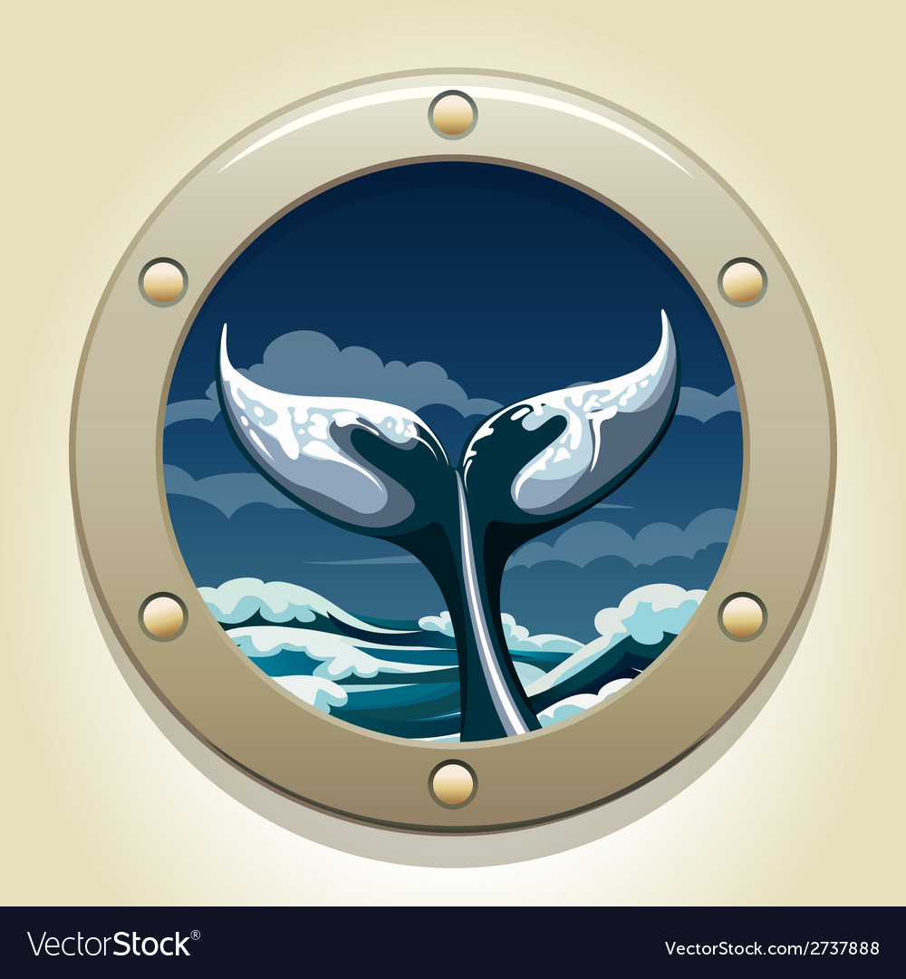 Whale tail vector | Price: 1 Credit (USD $1)