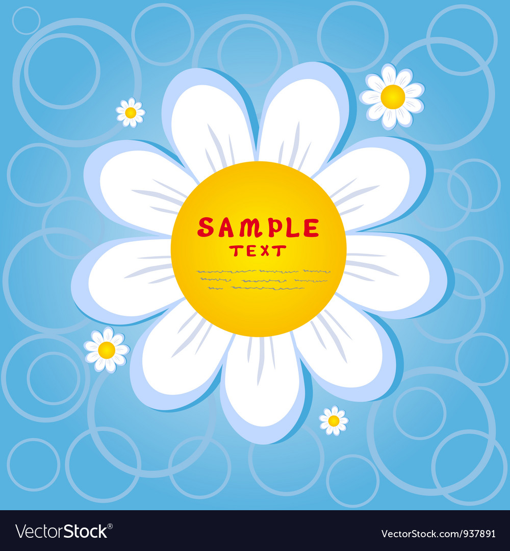 Chamomile vector | Price: 1 Credit (USD $1)