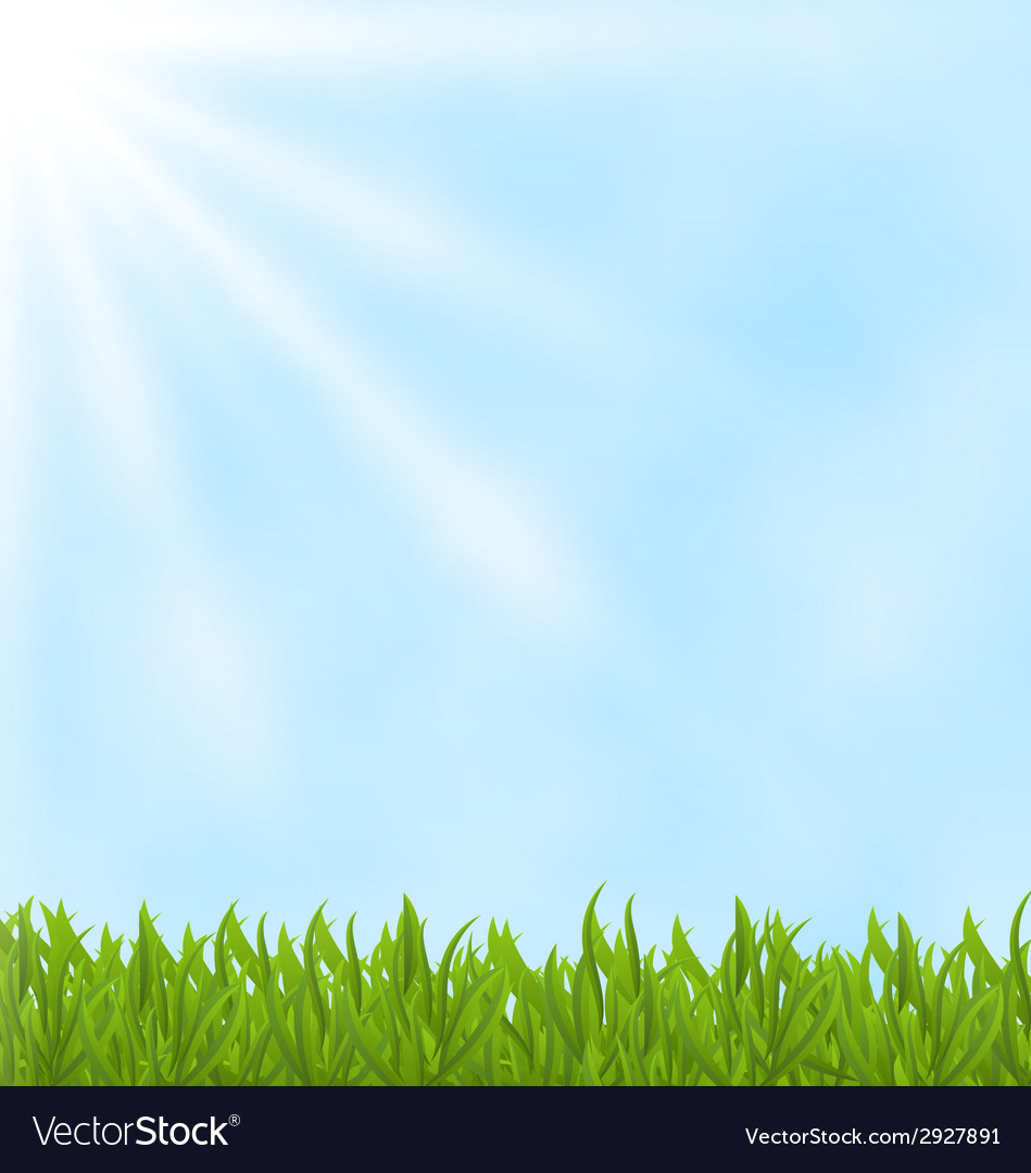 Summer background with green field and sky vector | Price: 1 Credit (USD $1)
