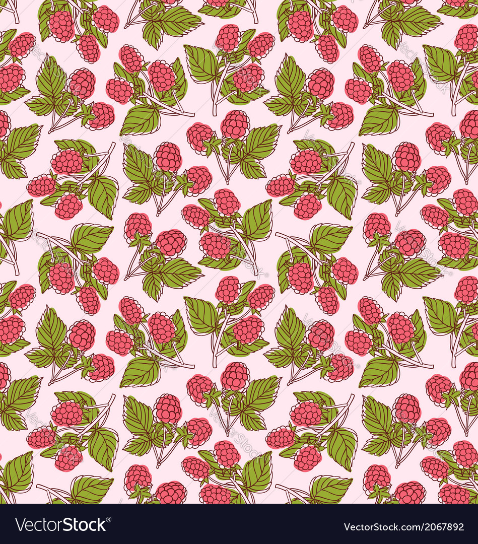 Raspberries pattern vector | Price: 1 Credit (USD $1)