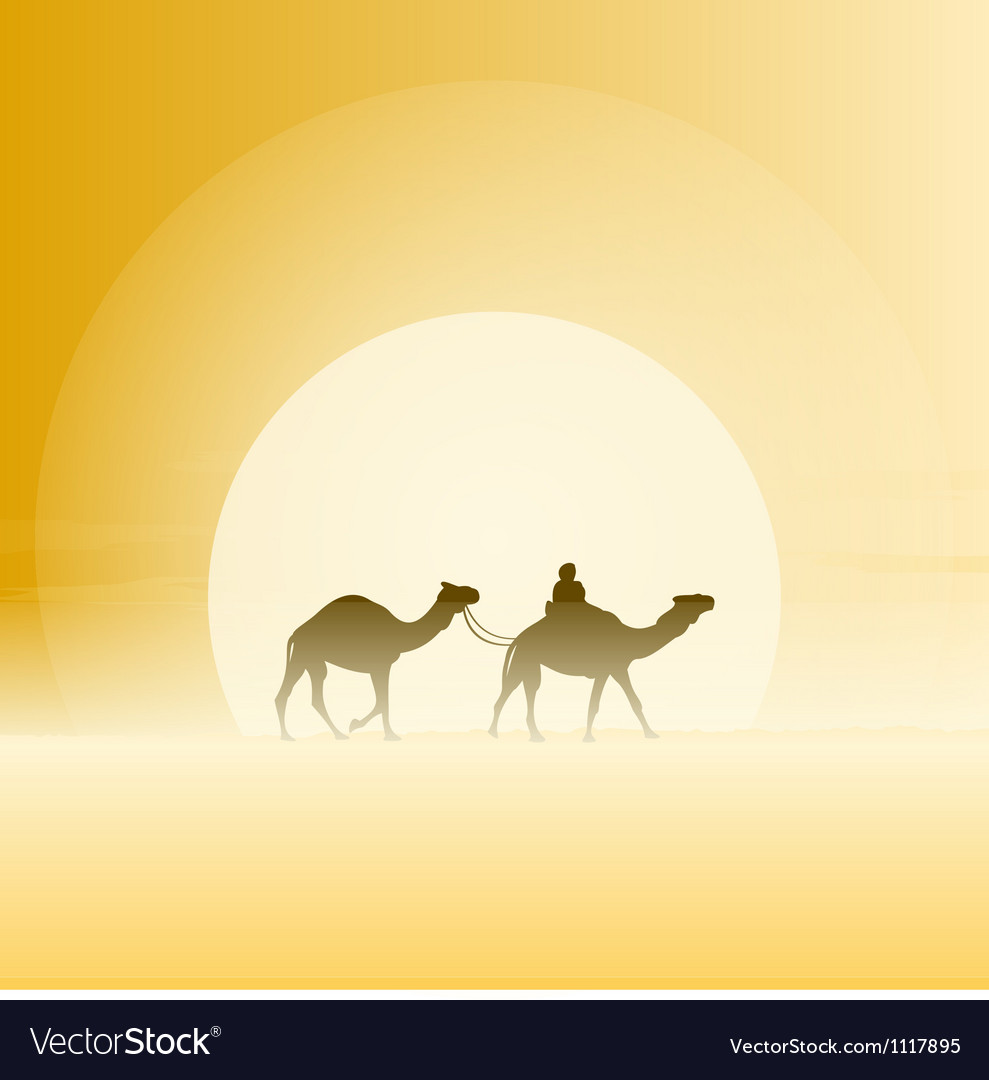 Two camels and sun vector | Price: 1 Credit (USD $1)
