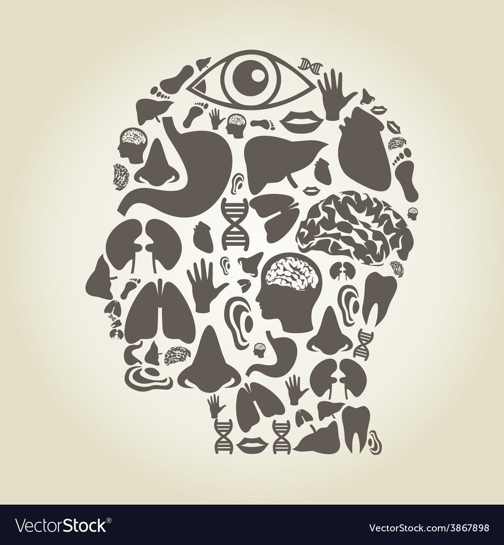 Head of part body vector | Price: 1 Credit (USD $1)
